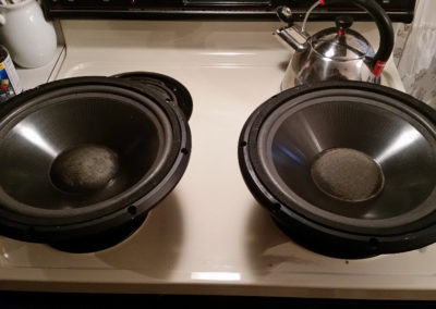 """infinity 10"""" Woofers After"""